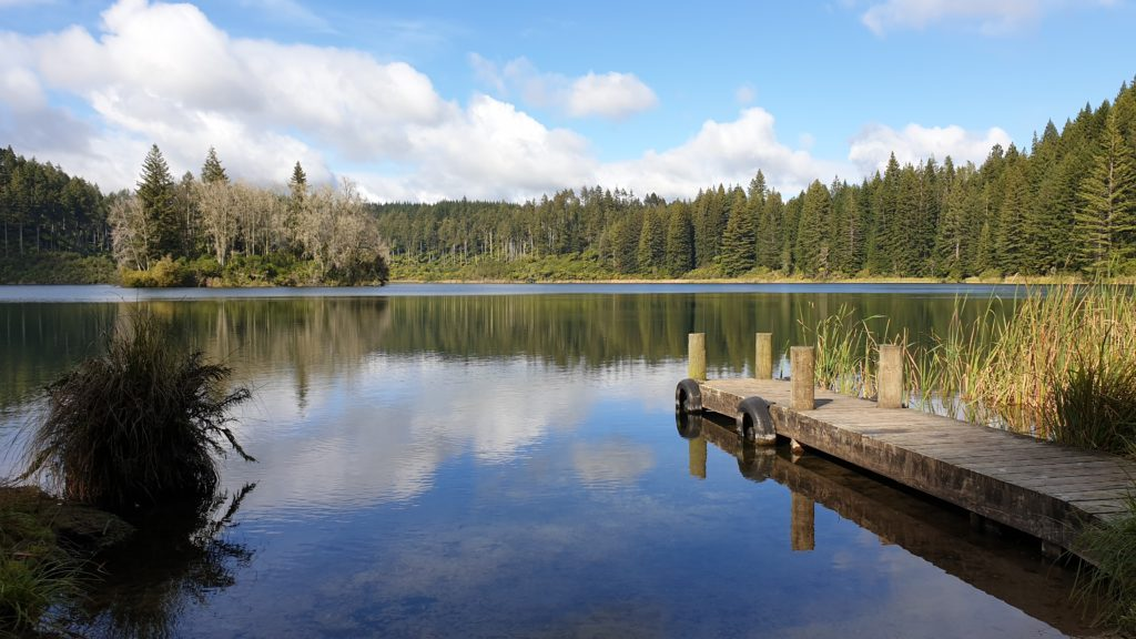 glassy lake with clouds and blue sky reflected in it. Bounded by pine trees