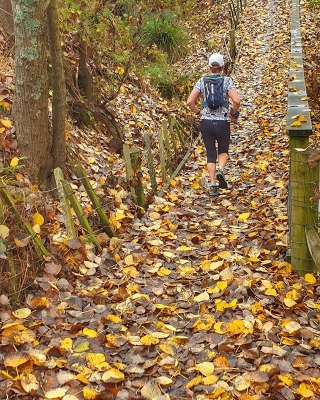 Runner running along a path strewn with autumn leaves