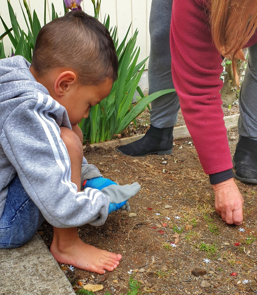 a wee boy crouched down picking things up of the ground.