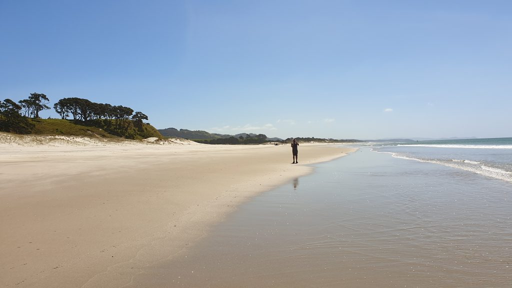 beachscape. A man stands at the edge of the water and the golden sand.